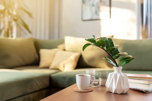 Relaxing time at comfort home with candles, coffee cup, books and vase with zamioculcas at wooden table. green sofa with yellow pillows. rays of sun.