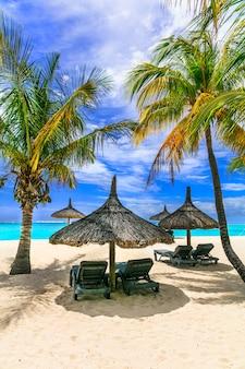 エキゾチックな楽園でリラックスした熱帯の休日-モーリシャス島