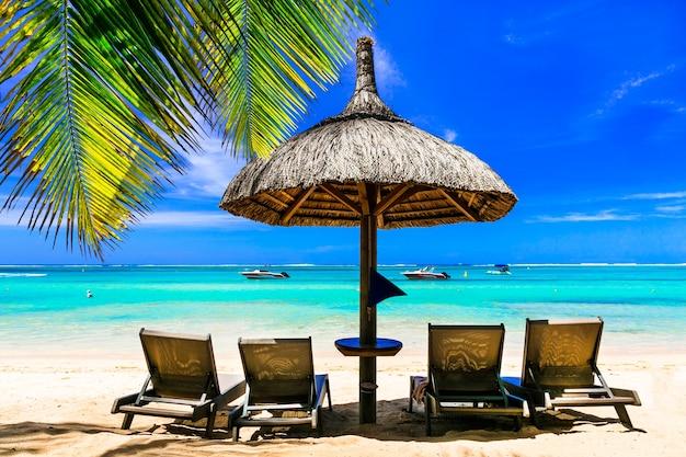 リラックスできる熱帯の休日。ヤシの木の下のビーチチェアと傘のある風景