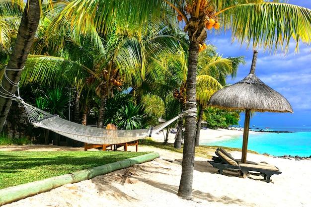 リラックスできる熱帯の休日。ヤシの木の下にハンモックのある風景
