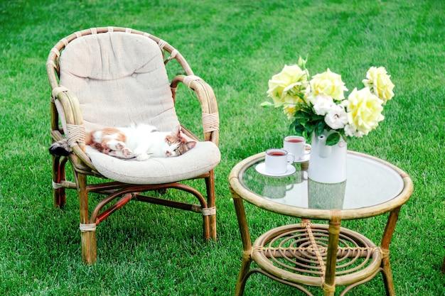 Расслабляющий белый рыжий кот играет на стуле в саду на улице в жаркие летние дни. садовый пейзаж со стулом в природе. отдых в парковом кафе. внешний двор. никто.