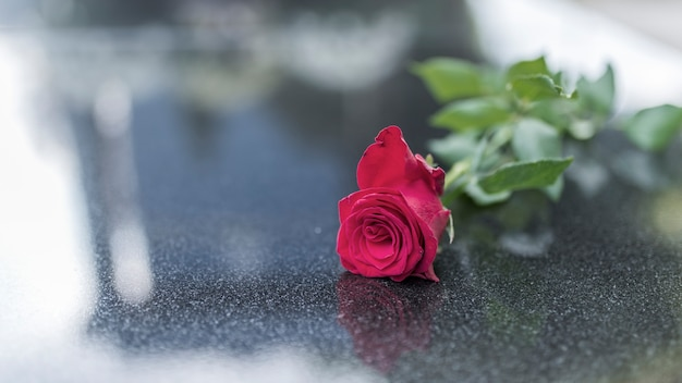 花の花崗岩のスラブの上に死者の記憶に1つの花を置く宗教的伝統