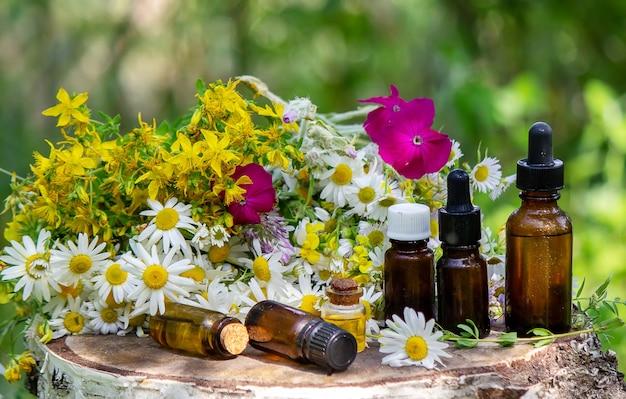 救済セントジョンズワートとカモミールの花をガラス瓶のクローズアップで水平に。自然。セレクティブフォーカス。
