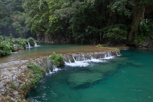 Remote jungle waterfalls of semuc champey. fresh turquoise water in lush green rainforest.