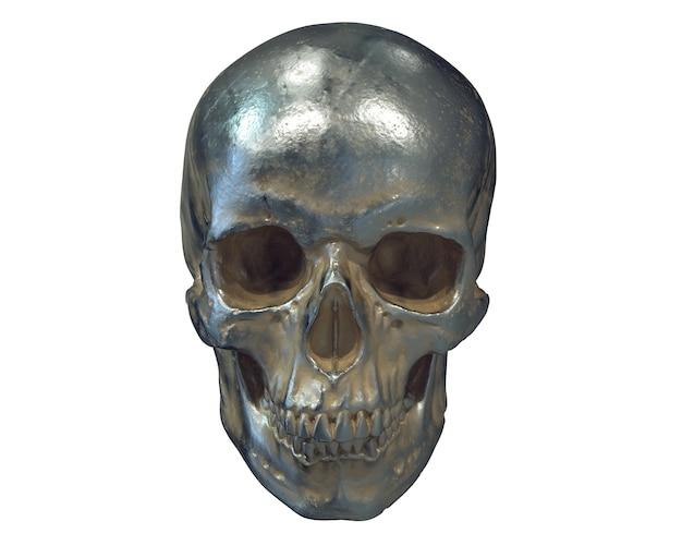 Render of metallic human skull isolated