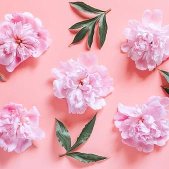 淡いピンクの背景に分離された、満開のパステルピンク色と葉のいくつかの牡丹の花の繰り返しパターン。フラットレイ、上面図。平方