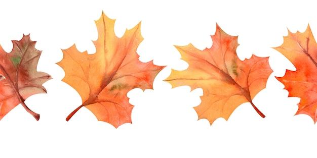 秋のカエデの葉で夏の水平方向の境界線を繰り返す