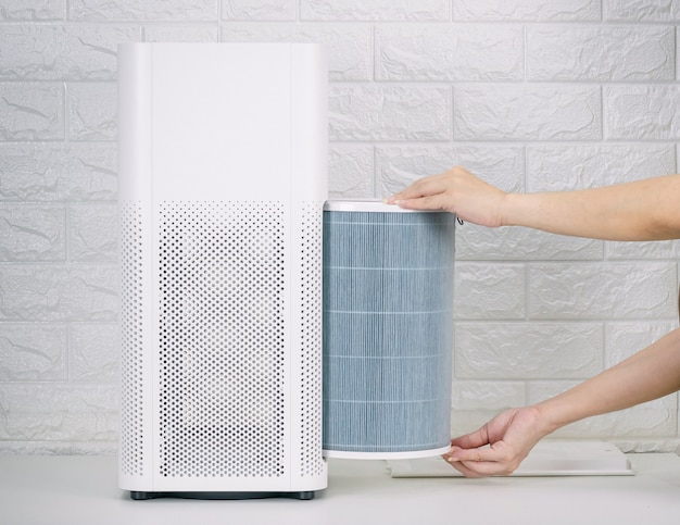 Replace the air purifier filter in the house.