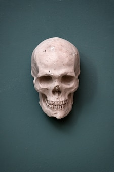 Replica of a human skull hanging on a teal colored wall conceptual of halloween, death and morbidity