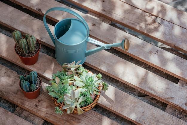 庭師の鉢やじょうろのための家庭用ツールでの植物の植え替え