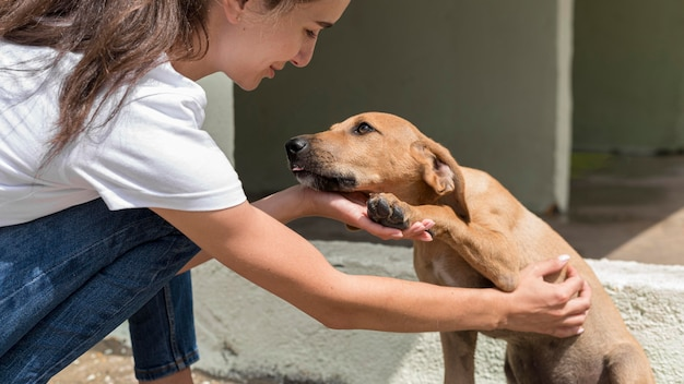 Cane da salvataggio godendo di essere animale domestico da donna al rifugio