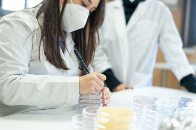 Researcher doctor scientist or laboratory assistant working in lab