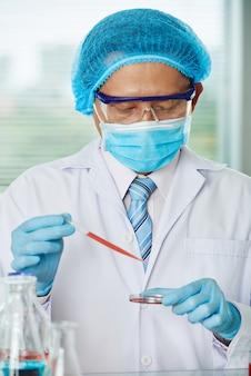 Исследователь наливает жидкость в чашку петри