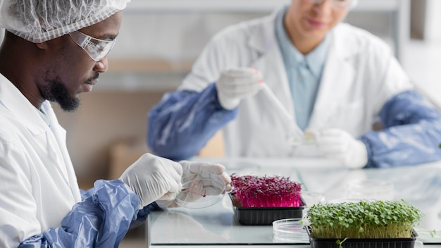 식물이있는 생명 공학 연구소의 연구원