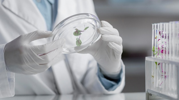 Исследователи в лаборатории, держа чашку петри