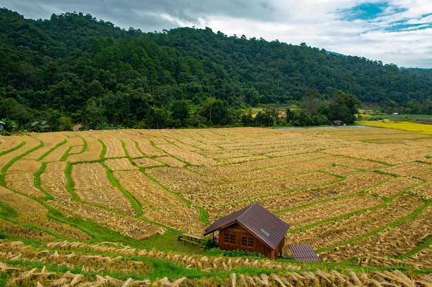 Resort and beautiful scenery, homestay accommodation for tourists house in chiang mai