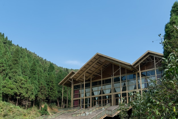 Resort in the valley forest