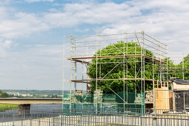 Restoration and shaping of old tree in european city. plant in scaffolding, people care about nature
