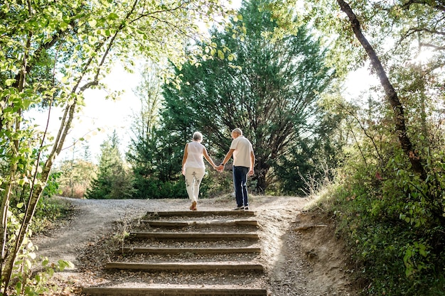 森の中の日没の屋外散歩中に手をつないで引退したカップル。