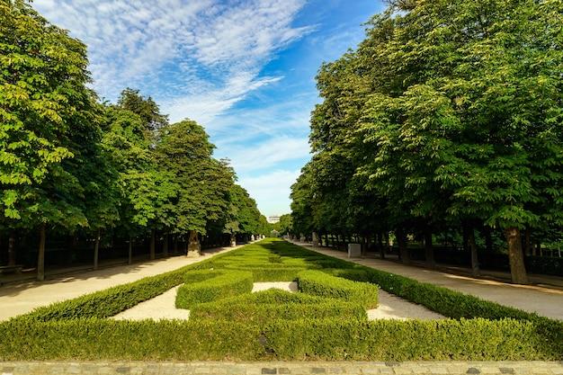 마드리드의 레티로 공원(retiro park)은 잘린 녹색 울타리와 큰 나무가 있는 지역입니다.
