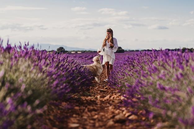 Красивая женщина с ее собакой золотого retriever в полях лаванды на заходе солнца.