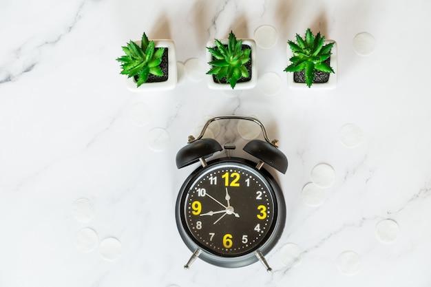 Retro alarm clock, succulent plants, top view flat lay.