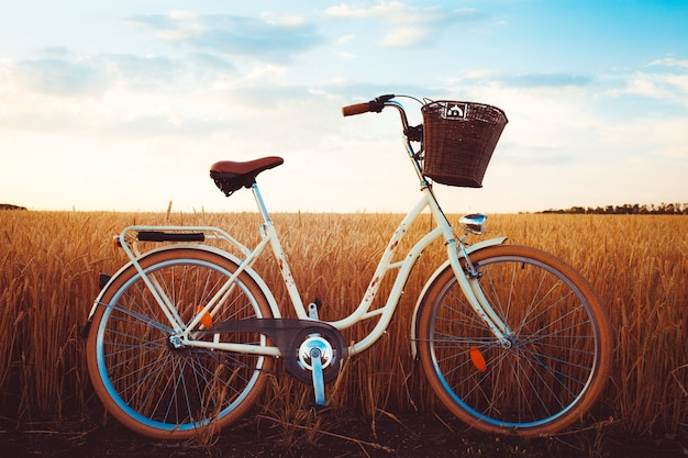 Retro bike at sunset in the field