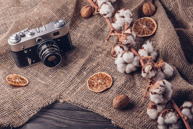 Retro camera and cotton on a branch in a rustic style.