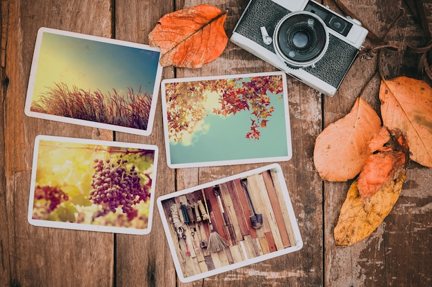 Retro camera and photo of memories and nostalgia in fall