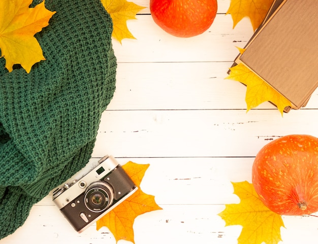レトロなフィルムカメラと秋の風情