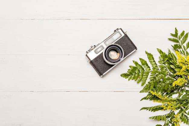 Retro photo camera and fern leaves