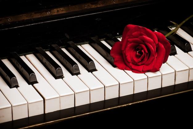 レトロなピアノキーボードと赤いバラのクローズアップ