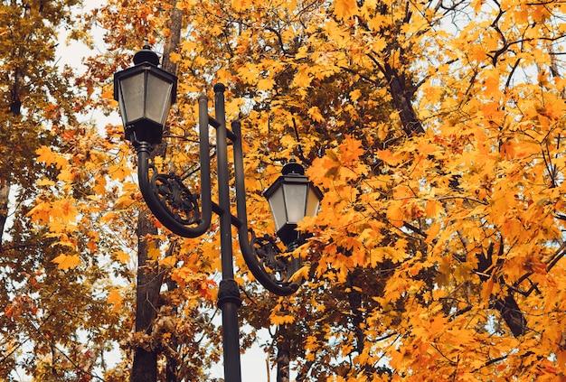 Ретро уличный фонарь в парке культуры и отдыха Premium Фотографии