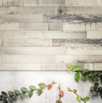 Retro striped wooden on concrete wall and ficus pumila,with copy space and vintage toned.