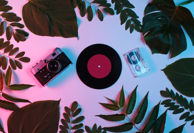Ретро стиль фона. ретро фотоаппарат, виниловая пластинка, аудиокассета, среди зеленых листьев на фоне с градиентным неоновым синим розовым светом.