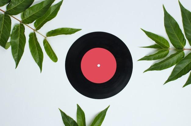 レトロなスタイルの背景。白い背景の上の熱帯の緑の葉の間のビニールレコード。