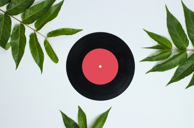 Retro style background. vinyl record among tropical green leaves on white background.