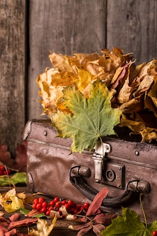 Retro suitcase with autumn leaves on wood