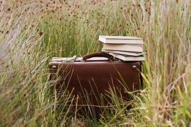 芝生の上に本とレトロスーツケース