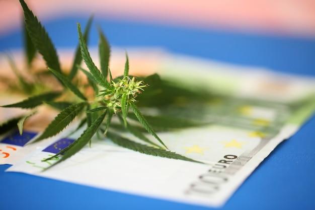 マリファナ業界の収益、大麻、課税、マリファナに関するユーロ紙幣。麻産業の経済。