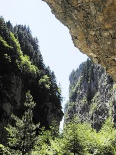 Rhodopi山の中trigrad峡谷