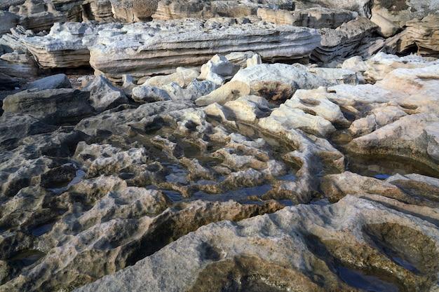 リブの岩の表面のテクスチャの背景