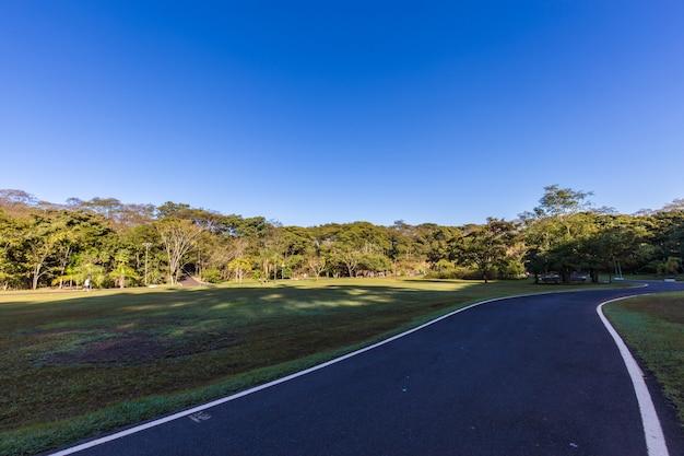 Ribeirao preto city park, aka curupira park