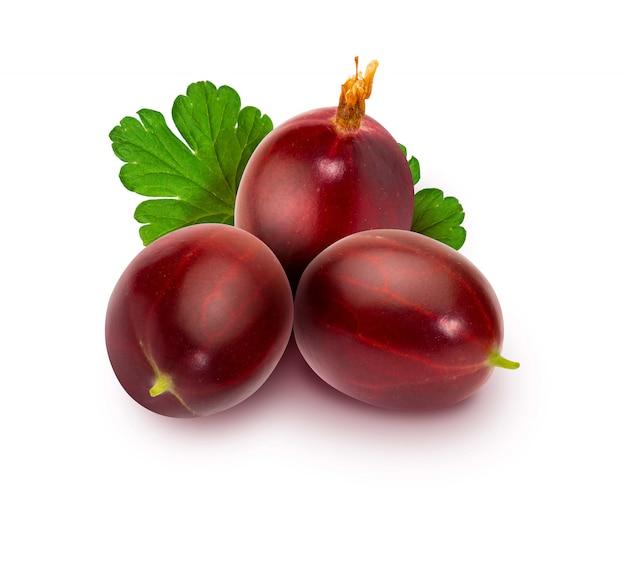Вкусный красный колючий красный крыжовник (ribes hirtellum - rode gooseberry), выложенный на деревянной доске
