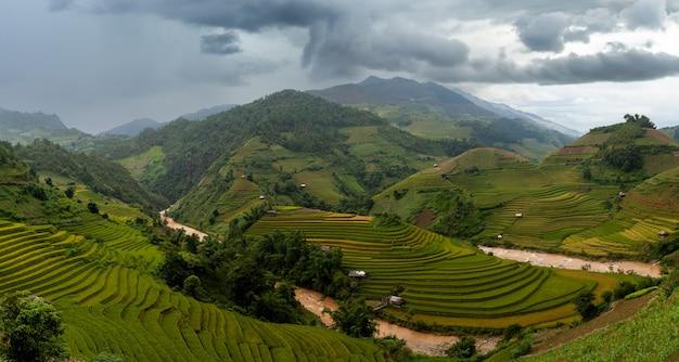 베트남 북서부의 논