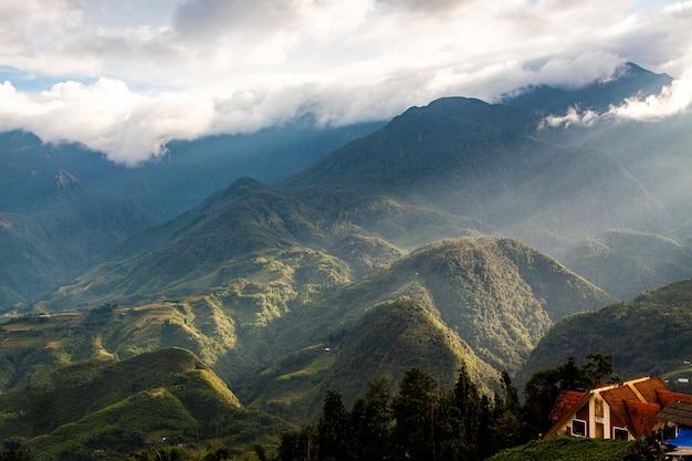 Райсовые поля в северо-западном вьетнаме