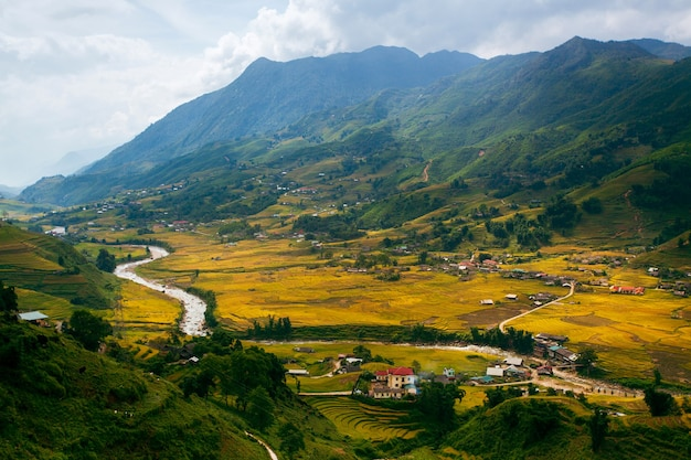 Рисовые поля на террасе му канг чай, йенбай, вьетнам