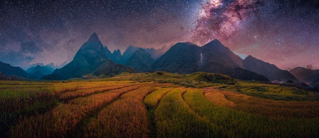 Rice fields on terraced with milky way with mount fansipan in lao cai, northern vietnam.