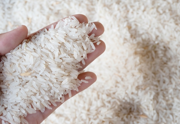 Rice on hand with blurred background