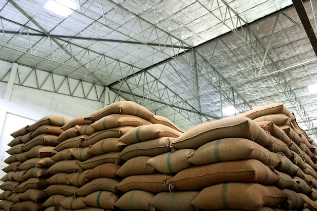 Rice sacks in the factory